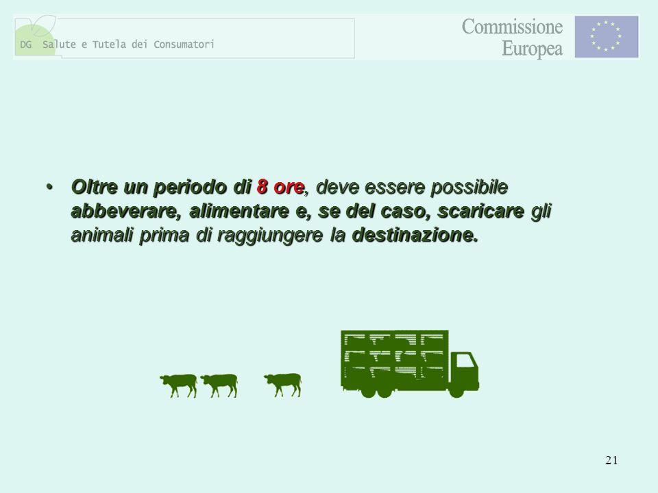21 Oltre un periodo di 8 ore, deve essere possibile abbeverare, alimentare e, se del caso, scaricare gli animali prima di raggiungere la destinazione.