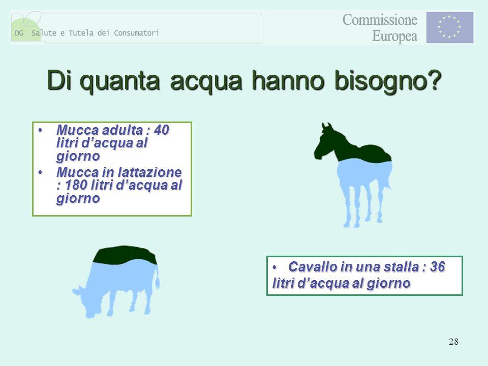 28 Mucca adulta : 40 litri dacqua al giornoMucca adulta : 40 litri dacqua al giorno Mucca in lattazione : 180 litri dacqua al giornoMucca in lattazion