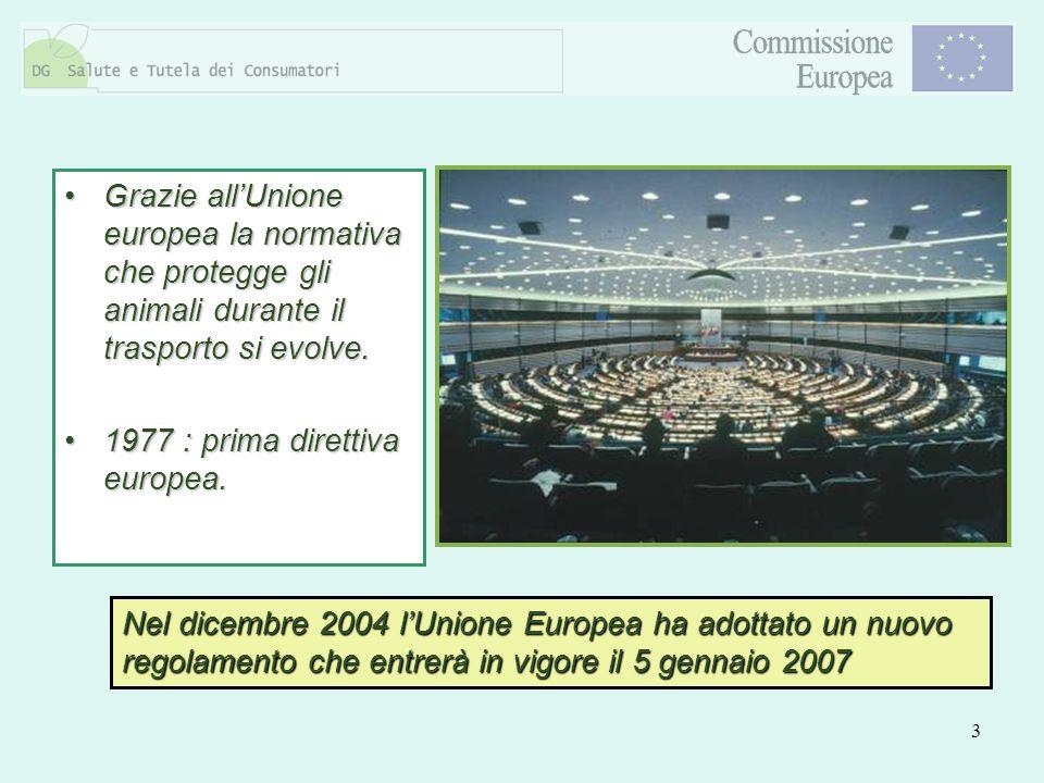 3 Grazie allUnione europea la normativa che protegge gli animali durante il trasporto si evolve.Grazie allUnione europea la normativa che protegge gli