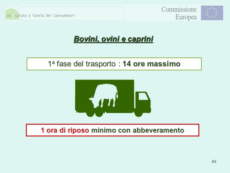 40 Bovini, ovini e caprini 1 a fase del trasporto : 14 ore massimo 1 ora di riposo minimo con abbeveramento