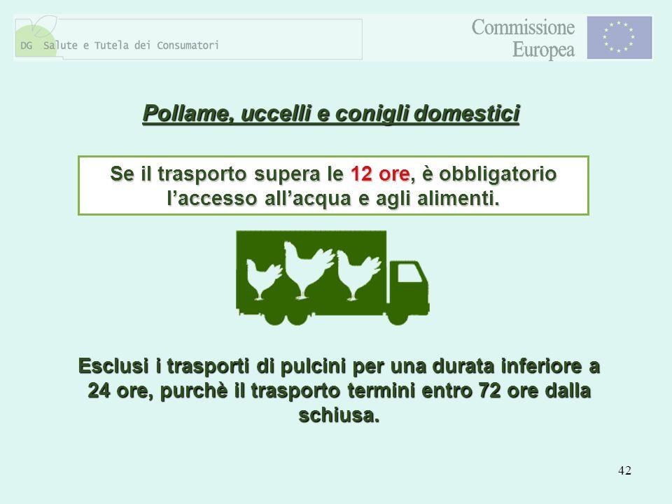 42 Pollame, uccelli e conigli domestici Se il trasporto supera le 12 ore, è obbligatorio laccesso allacqua e agli alimenti. Esclusi i trasporti di pul