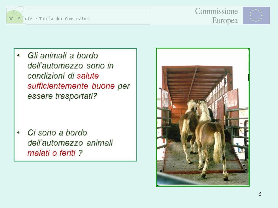 6 Gli animali a bordo dellautomezzo sono in condizioni di salute sufficientemente buone per essere trasportati?Gli animali a bordo dellautomezzo sono
