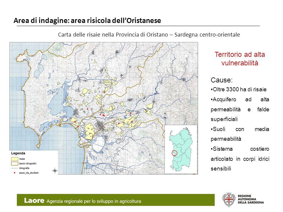 Area di indagine: area risicola dellOristanese Laore Agenzia regionale per lo sviluppo in agricoltura Carta delle risaie nella Provincia di Oristano –