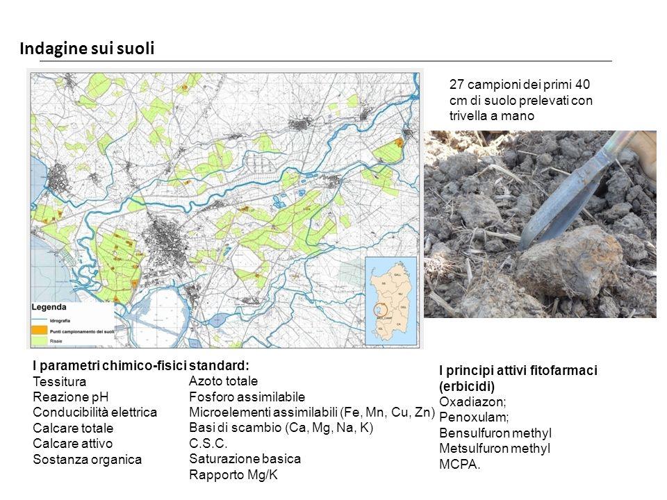 Indagine sui suoli Laore Agenzia regionale per lo sviluppo in agricoltura 27 campioni dei primi 40 cm di suolo prelevati con trivella a mano I paramet