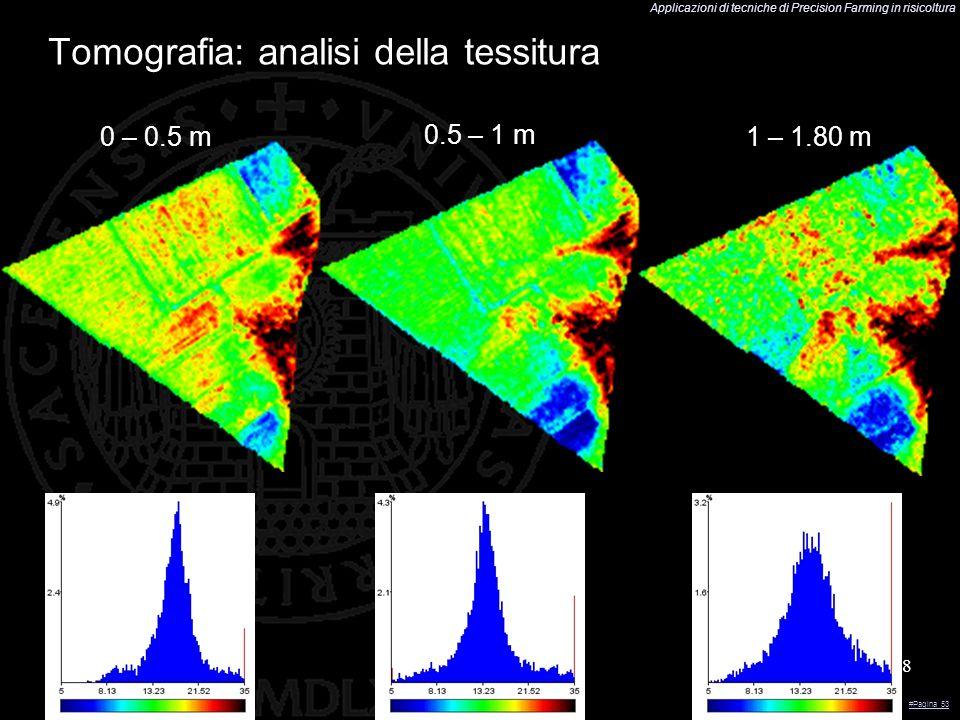 Applicazioni di tecniche di Precision Farming in risicoltura 38 Tomografia: analisi della tessitura 0 – 0.5 m 0.5 – 1 m 1 – 1.80 m #Pagina 53