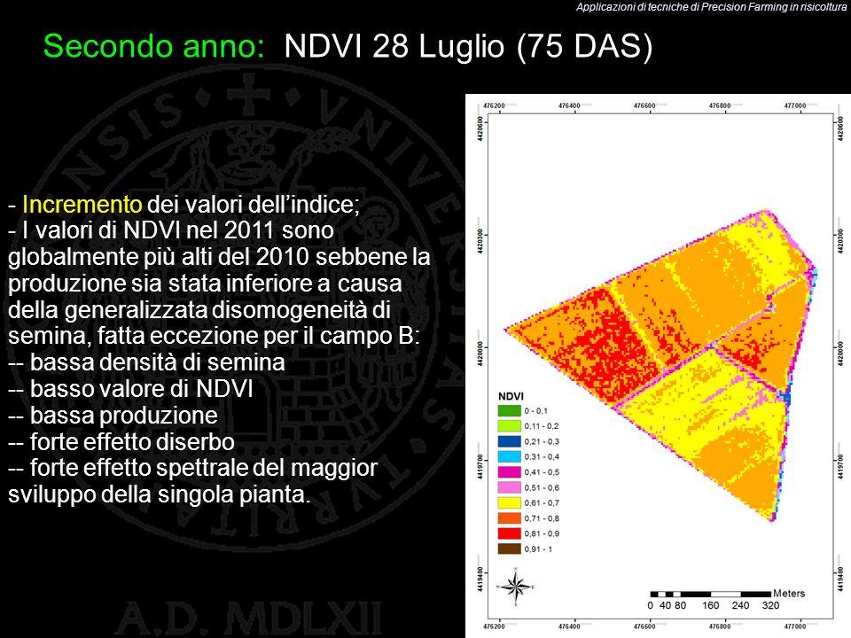 Applicazioni di tecniche di Precision Farming in risicoltura 46 Secondo anno: NDVI 28 Luglio (75 DAS) - Incremento dei valori dellindice; - I valori d