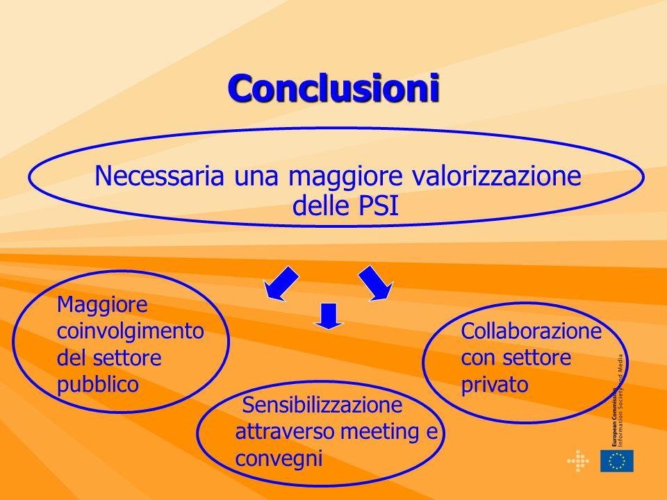 Conclusioni Necessaria una maggiore valorizzazione delle PSI Maggiore coinvolgimento del settore pubblico Sensibilizzazione attraverso meeting e convegni Collaborazione con settore privato