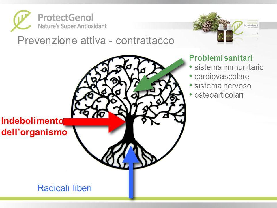Prevenzione attiva - contrattacco Radicali liberi Indebolimento dellorganismo Problemi sanitari sistema immunitario cardiovascolare sistema nervoso os