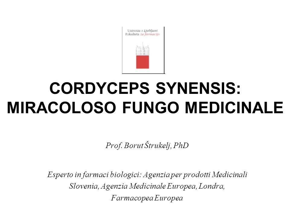CORDYCEPS SYNENSIS: MIRACOLOSO FUNGO MEDICINALE Prof. Borut Štrukelj, PhD Esperto in farmaci biologici: Agenzia per prodotti Medicinali Slovenia, Agen