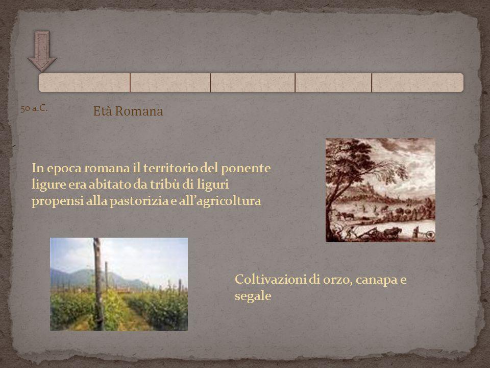 Età Romana 50 a.C. In epoca romana il territorio del ponente ligure era abitato da tribù di liguri propensi alla pastorizia e allagricoltura Coltivazi