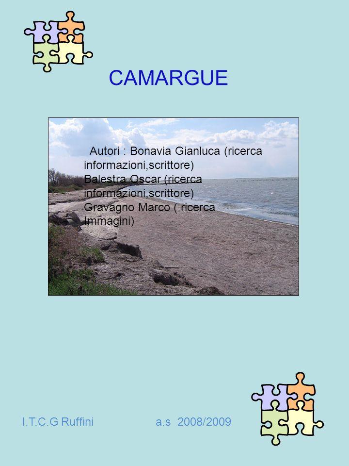 CAMARGUE Autori : Bonavia Gianluca (ricerca informazioni,scrittore) Balestra Oscar (ricerca informazioni,scrittore) Gravagno Marco ( ricerca Immagini)