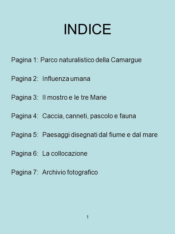1 INDICE Pagina 1: Parco naturalistico della Camargue Pagina 2: Influenza umana Pagina 3: Il mostro e le tre Marie Pagina 4: Caccia, canneti, pascolo