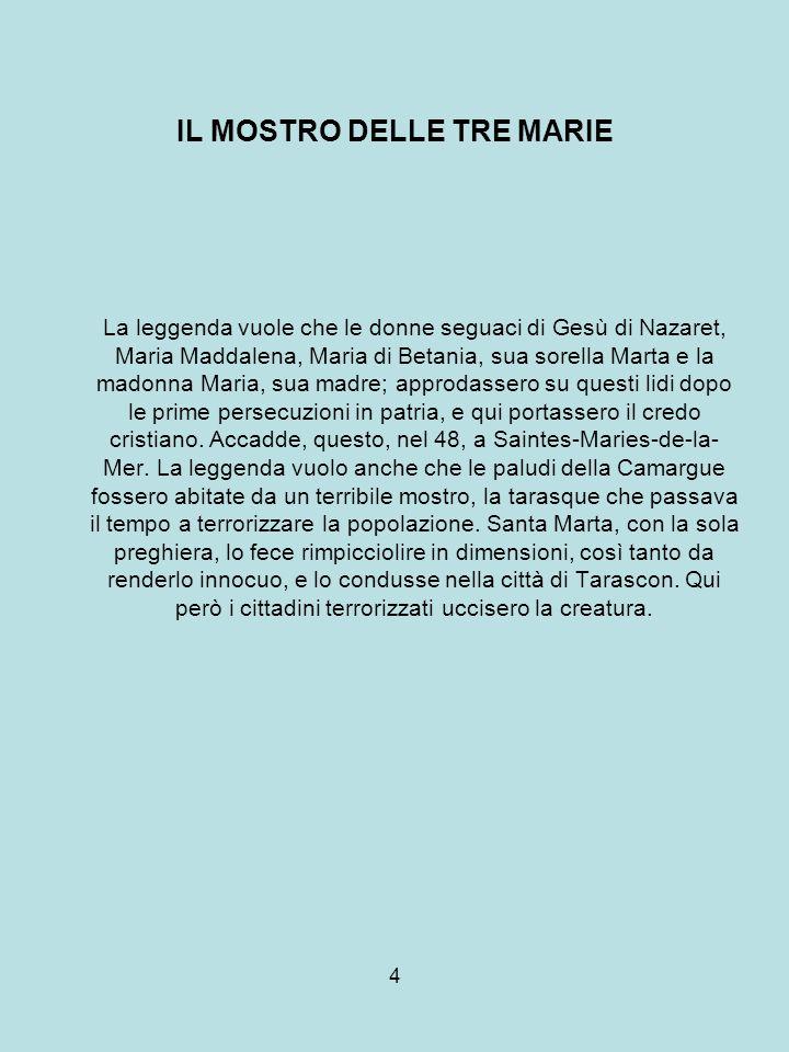 5 CACCIA, CANNETI, FLORA E FAUNA Le paludi ricche di canneti contribuiscono al valore internazionale del patrimonio naturale della Camargue.
