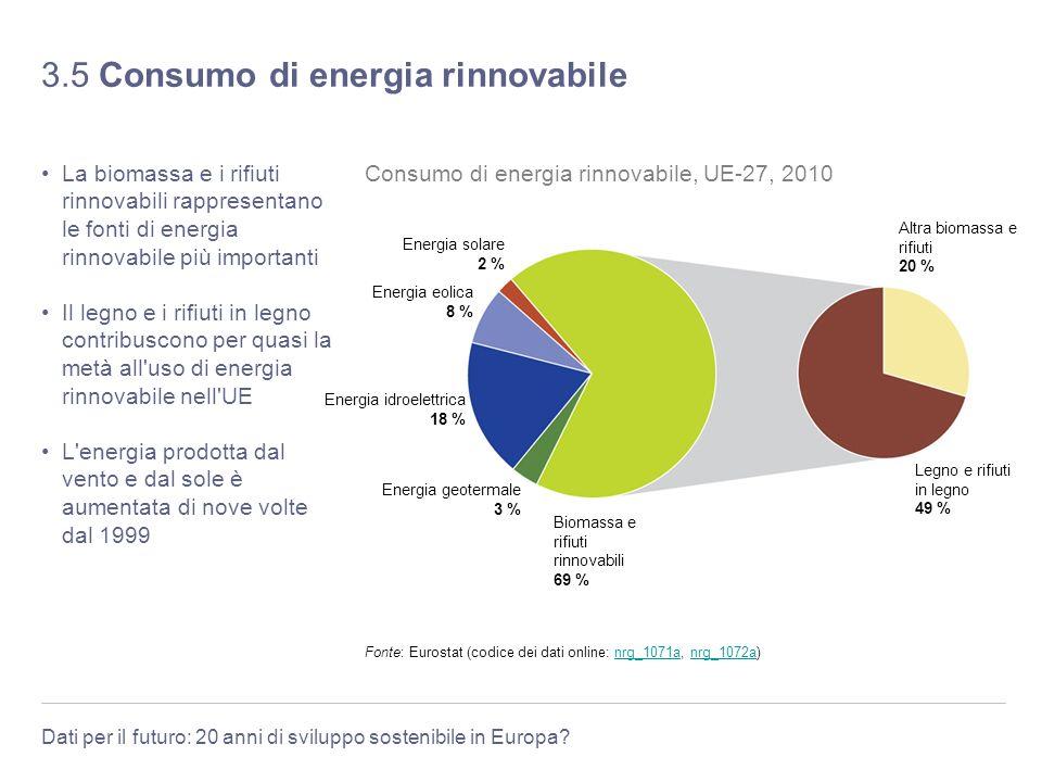 Dati per il futuro: 20 anni di sviluppo sostenibile in Europa? 3.5 Consumo di energia rinnovabile La biomassa e i rifiuti rinnovabili rappresentano le