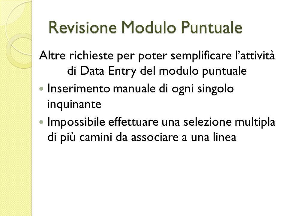 Revisione Modulo Puntuale Altre richieste per poter semplificare lattività di Data Entry del modulo puntuale Inserimento manuale di ogni singolo inqui