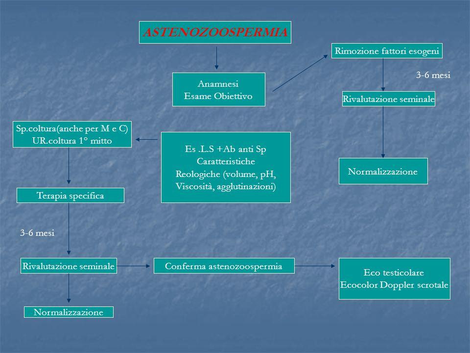 ASTENOZOOSPERMIA Anamnesi Esame Obiettivo Es.L.S +Ab anti Sp Caratteristiche Reologiche (volume, pH, Viscosità, agglutinazioni) Sp.coltura(anche per M