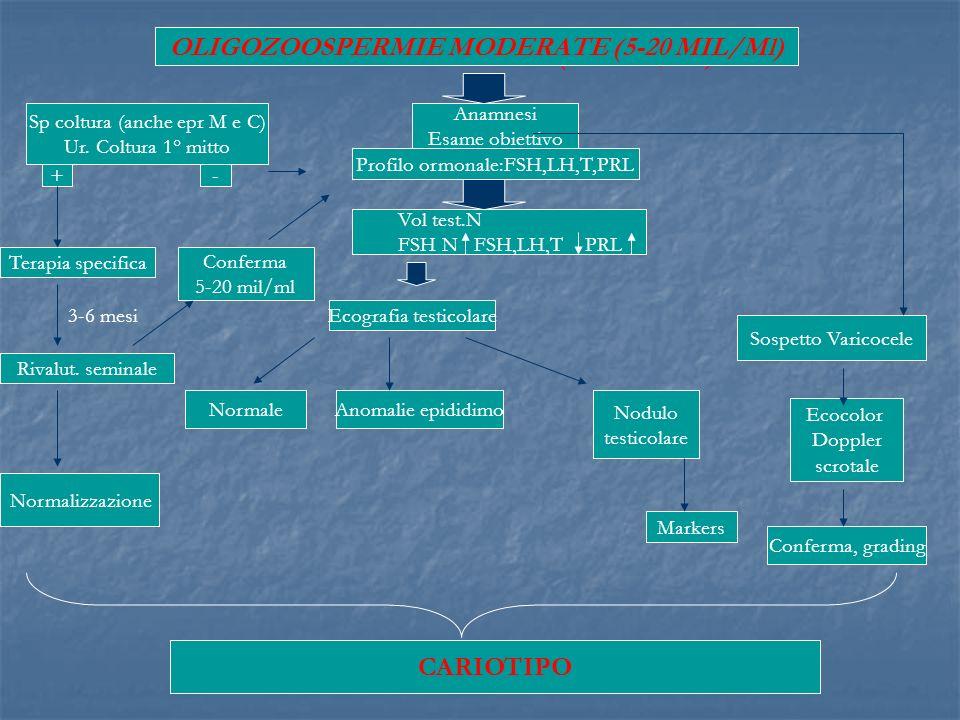 OLIGOZOOSPERMIE GRAVI (1-5 MIL/Ml) Anamnesi Esame obiettivo Profilo ormonale:FSH,LH,T,PRL Vol test.N FSH N FSH,LH,T PRL Sp coltura (anche epr M e C) U
