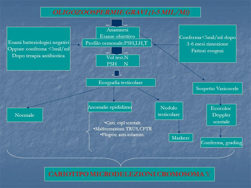 OLIGOZOOSPERMIE GRAVI (1-5 MIL/Ml) Anamnesi Esame obiettivo Profilo ormonale:FSH,LH,T Vol test.N FSH N Esami batteriologici negativi Oppure conferma <