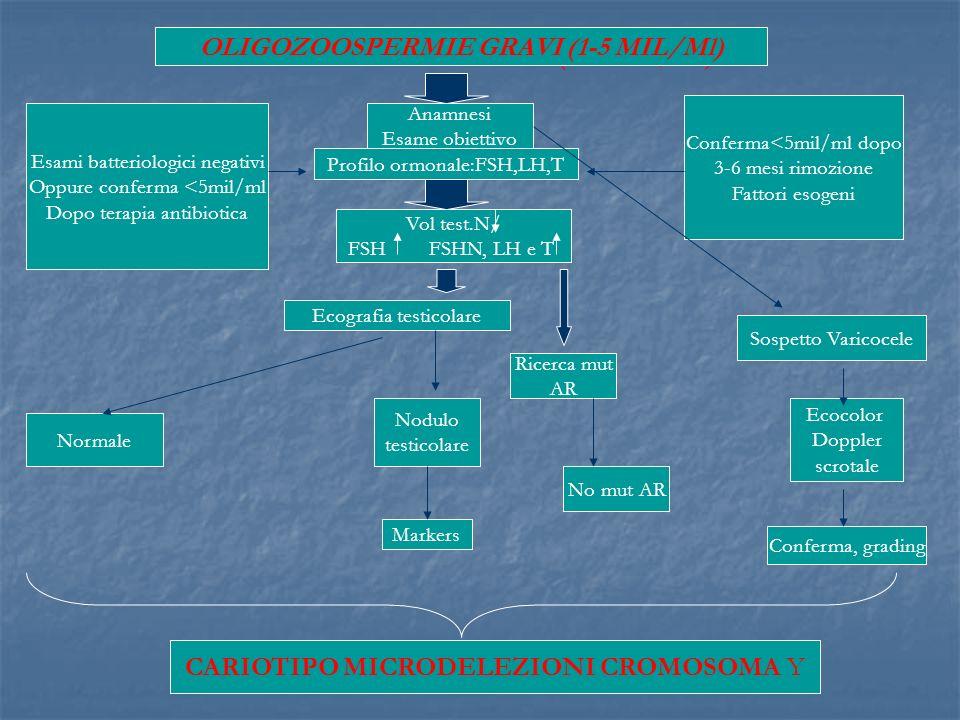 Anamnesi Esame obiettivo Profilo ormonale:FSH,LH,T Vol test.N/ FSH FSHN, LH e T Esami batteriologici negativi Oppure conferma <5mil/ml Dopo terapia an