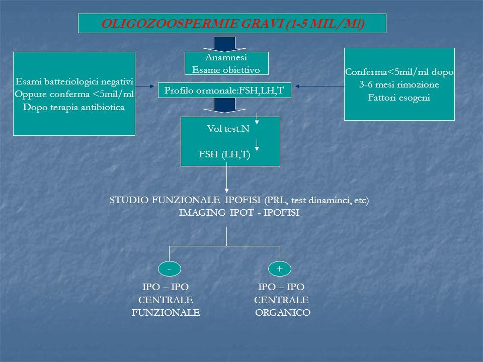 Anamnesi Esame obiettivo Profilo ormonale:FSH,LH,T Vol test.N FSH (LH,T) Esami batteriologici negativi Oppure conferma <5mil/ml Dopo terapia antibioti