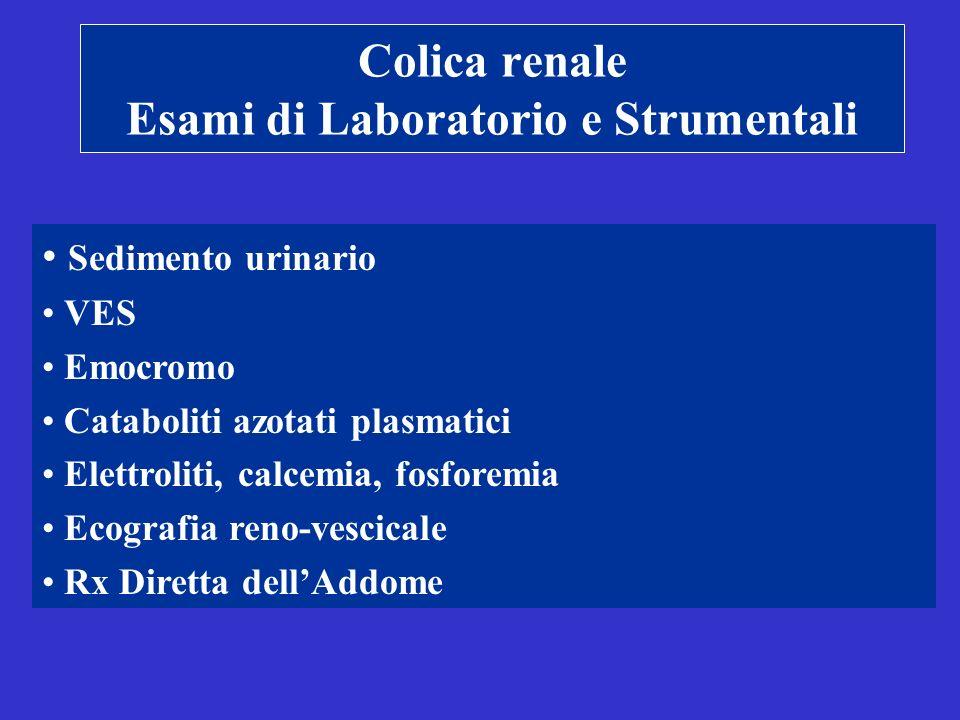 Colica renale Esami di Laboratorio e Strumentali Sedimento urinario VES Emocromo Cataboliti azotati plasmatici Elettroliti, calcemia, fosforemia Ecografia reno-vescicale Rx Diretta dellAddome