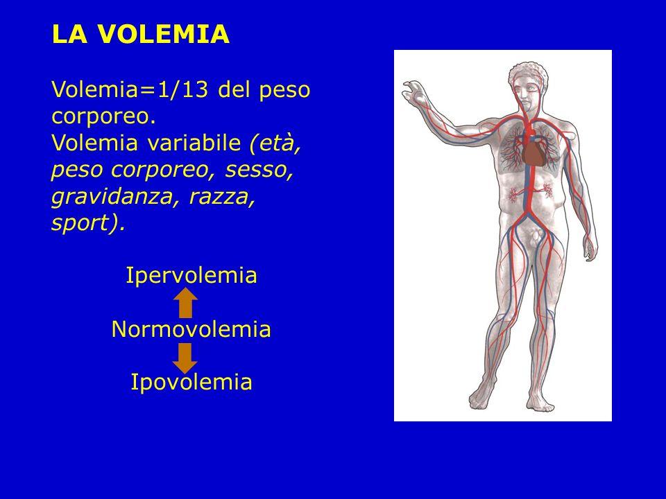 LA VOLEMIA Volemia=1/13 del peso corporeo. Volemia variabile (età, peso corporeo, sesso, gravidanza, razza, sport). Ipervolemia Normovolemia Ipovolemi