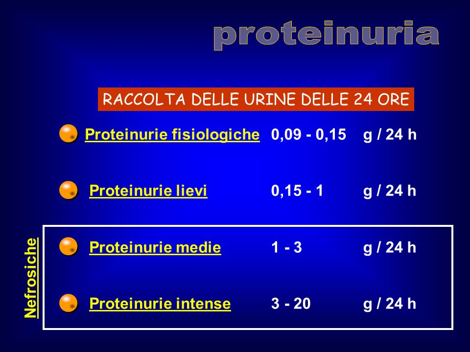 Proteinurie fisiologiche Proteinurie lievi Proteinurie medie Proteinurie intense 0,09 - 0,15 g / 24 h 0,15 - 1 g / 24 h 1 - 3 g / 24 h 3 - 20 g / 24 h