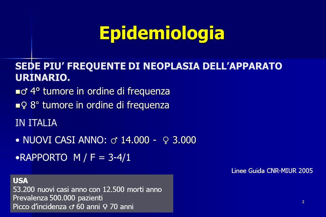 2 SEDE PIU FREQUENTE DI NEOPLASIA DELLAPPARATO URINARIO. 4° tumore in ordine di frequenza 4° tumore in ordine di frequenza 8° tumore in ordine di freq