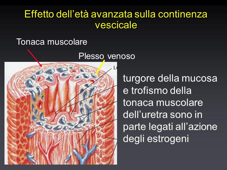 Effetto delletà avanzata sulla continenza vescicale Plesso venoso Tonaca muscolare turgore della mucosa e trofismo della tonaca muscolare delluretra sono in parte legati allazione degli estrogeni