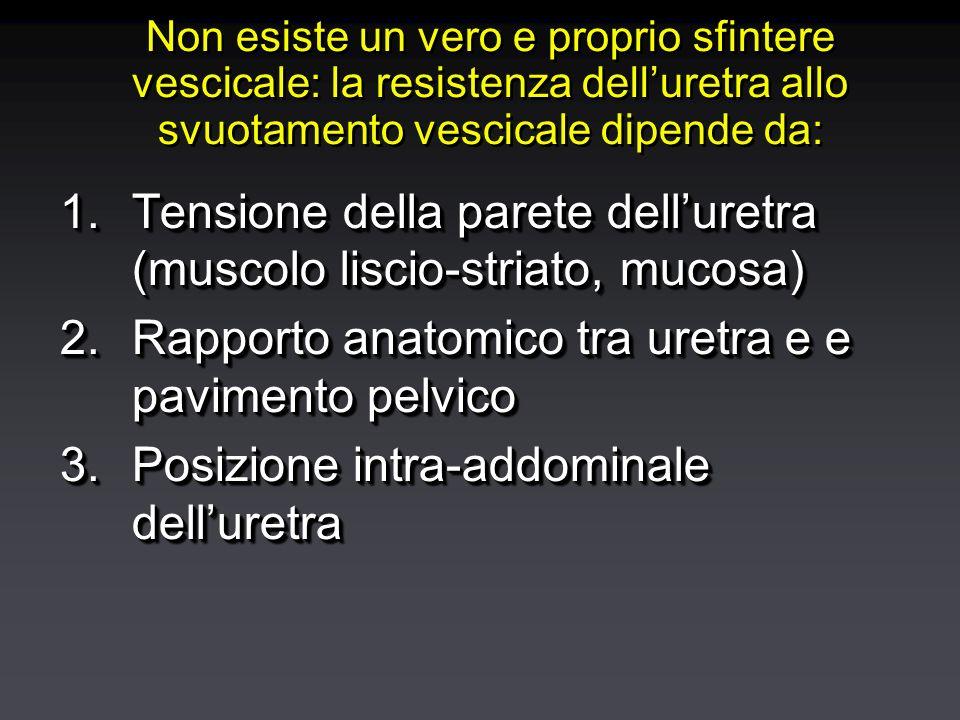 Non esiste un vero e proprio sfintere vescicale: la resistenza delluretra allo svuotamento vescicale dipende da: 1.Tensione della parete delluretra (muscolo liscio-striato, mucosa) 2.Rapporto anatomico tra uretra e e pavimento pelvico 3.Posizione intra-addominale delluretra 1.Tensione della parete delluretra (muscolo liscio-striato, mucosa) 2.Rapporto anatomico tra uretra e e pavimento pelvico 3.Posizione intra-addominale delluretra