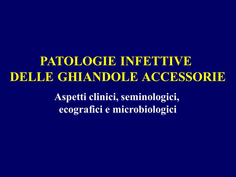 Aspetti clinici, seminologici, ecografici e microbiologici PATOLOGIE INFETTIVE DELLE GHIANDOLE ACCESSORIE