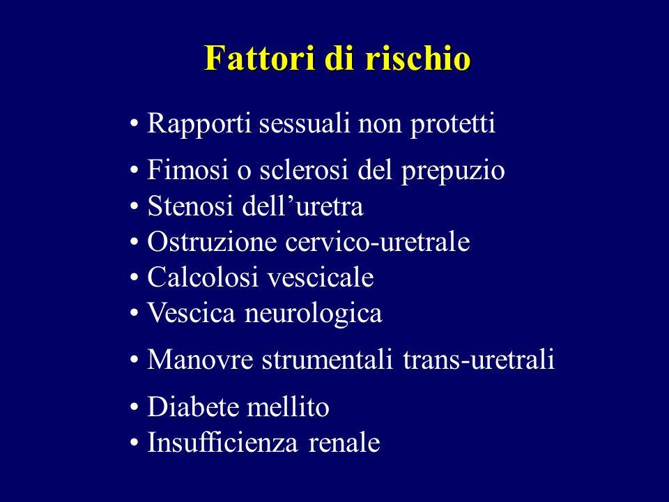 Fattori di rischio Rapporti sessuali non protetti Fimosi o sclerosi del prepuzio Stenosi delluretra Ostruzione cervico-uretrale Calcolosi vescicale Ve