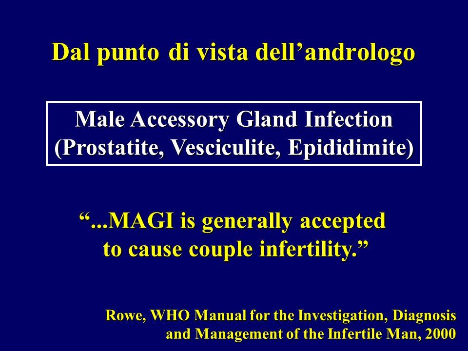 Dal punto di vista dellandrologo Male Accessory Gland Infection (Prostatite, Vesciculite, Epididimite) Rowe, WHO Manual for the Investigation, Diagnos
