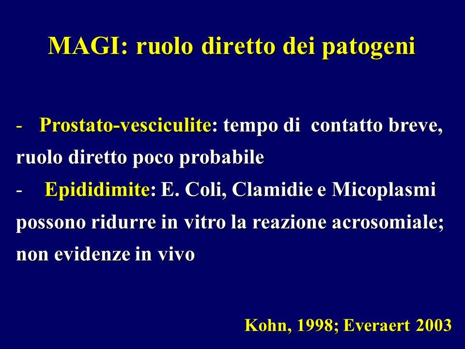 MAGI: ruolo diretto dei patogeni Kohn, 1998; Everaert 2003 -Prostato-vesciculite: tempo di contatto breve, ruolo diretto poco probabile - Epididimite: