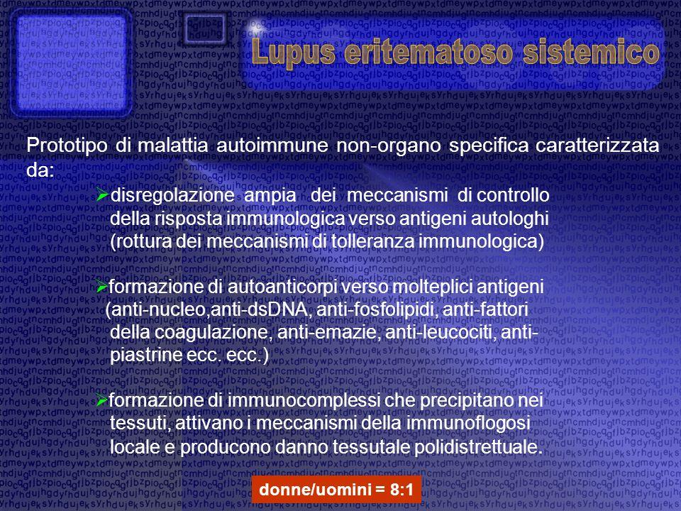 Prototipo di malattia autoimmune non-organo specifica caratterizzata da: disregolazione ampia dei meccanismi di controllo della risposta immunologica