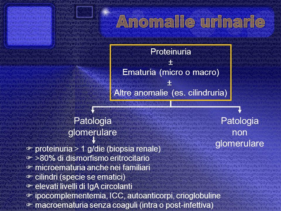 Proteinuria ± Ematuria (micro o macro) ± Altre anomalie (es. cilindruria) Patologia glomerulare Patologia non glomerulare proteinuria > 1 g/die (biops