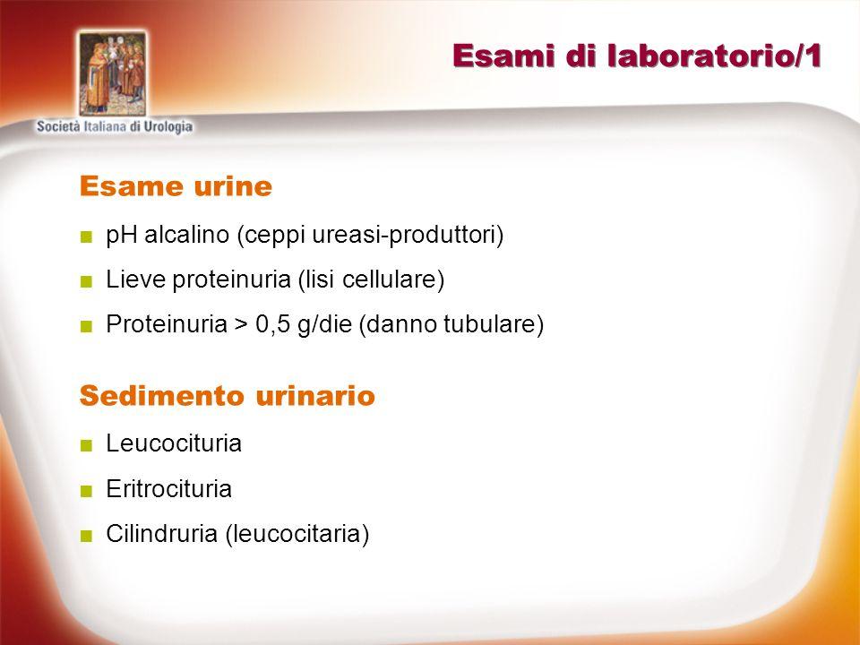 Esami di laboratorio/1 Esame urine pH alcalino (ceppi ureasi-produttori) Lieve proteinuria (lisi cellulare) Proteinuria > 0,5 g/die (danno tubulare) S