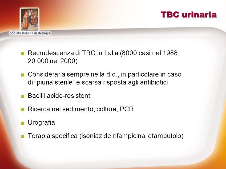 TBC urinaria Recrudescenza di TBC in Italia (8000 casi nel 1988, 20.000 nel 2000) Considerarla sempre nella d.d., in particolare in caso di piuria ste