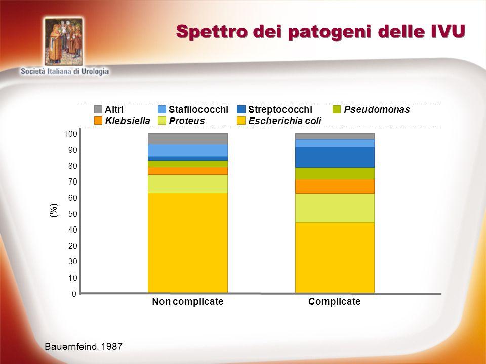 Spettro dei patogeni delle IVU Bauernfeind, 1987 0 50 20 10 60 40 30 70 80 100 (%) ProteusEscherichia coliKlebsiella AltriStafilococchiStreptococchiPs