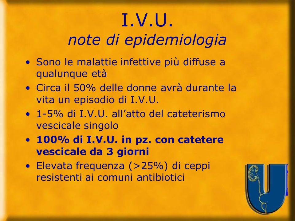 Raccomandazione 11.27 Grado D È indicato evitare il cateterismo vescicale quando non è necessario.
