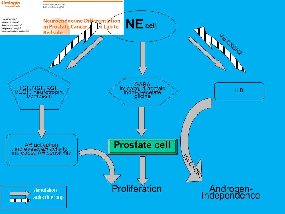 Proliferation Androgen- independence NE cell TGF, NGF, KGF, VEGF, neurotropin, bombesin GABA imidazol-4-acetate indol-3-acetate glicine IL8 AR activat