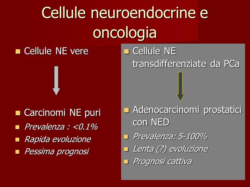 Cellule neuroendocrine e oncologia Cellule NE vere Cellule NE vere Carcinomi NE puri Carcinomi NE puri Prevalenza : <0.1% Prevalenza : <0.1% Rapida ev