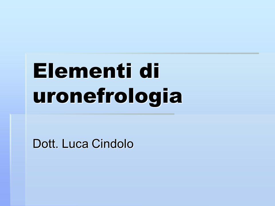 Elementi di uronefrologia Dott. Luca Cindolo