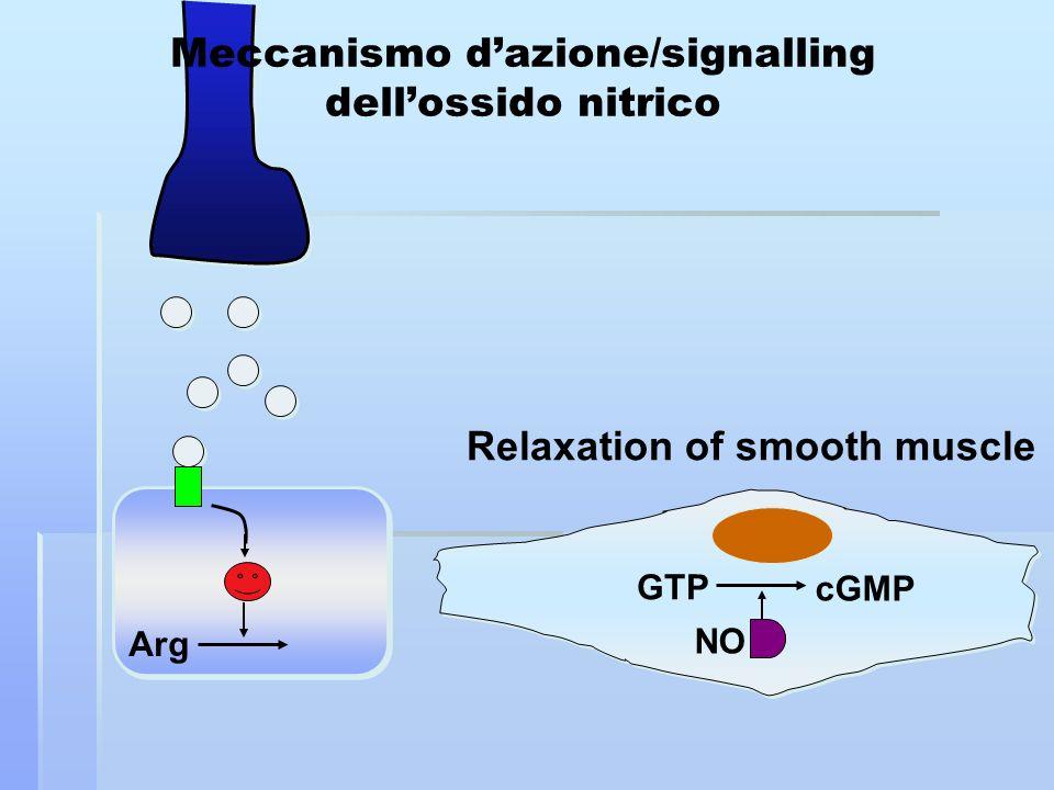 Arg NO GTP cGMP Relaxation of smooth muscle Meccanismo dazione/signalling dellossido nitrico
