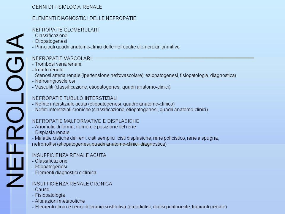 CENNI DI FISIOLOGIA RENALE ELEMENTI DIAGNOSTICI DELLE NEFROPATIE NEFROPATIE GLOMERULARI - Classificazione - Etiopatogenesi - Principali quadri anatomo-clinici delle nefropatie glomerulari primitive NEFROPATIE VASCOLARI - Trombosi vena renale - Infarto renale - Stenosi arteria renale (ipertensione nefrovascolare): eziopatogenesi, fisiopatologia, diagnostica) - Nefroangiosclerosi - Vasculiti (classificazione, etiopatogenesi, quadri anatomo-clinici) NEFROPATIE TUBULO-INTERSTIZIALI - Nefrite interstiziale acuta (etiopatogenesi, quadro anatomo-clinico) - Nefriti interstiziali croniche (classificazione, etiopatogenesi, quadri anatomo-clinici) NEFROPATIE MALFORMATIVE E DISPLASICHE - Anomalie di forma, numero e posizione del rene - Displasia renale - Malattie cistiche dei reni: cisti semplici, cisti displasiche, rene policistico, rene a spugna, nefronoftisi (etiopatogenesi, quadri anatomo-clinici, diagnostica) INSUFFICIENZA RENALE ACUTA - Classificazione - Etiopatogenesi - Elementi diagnostici e clinica INSUFFICIENZA RENALE CRONICA - Cause - Fisiopatologia - Alterazioni metaboliche - Elementi clinici e cenni di terapia sostitutiva (emodialisi, dialisi peritoneale, trapianto renale) NEFROLOGIA