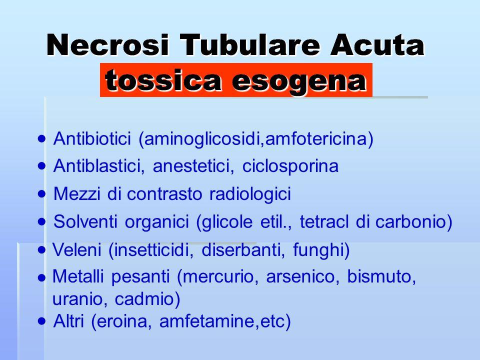 Antibiotici (aminoglicosidi,amfotericina) Antiblastici, anestetici, ciclosporina Mezzi di contrasto radiologici Solventi organici (glicole etil., tetracl di carbonio) Veleni (insetticidi, diserbanti, funghi) Metalli pesanti (mercurio, arsenico, bismuto, uranio, cadmio) Altri (eroina, amfetamine,etc) Necrosi Tubulare Acuta tossica esogena