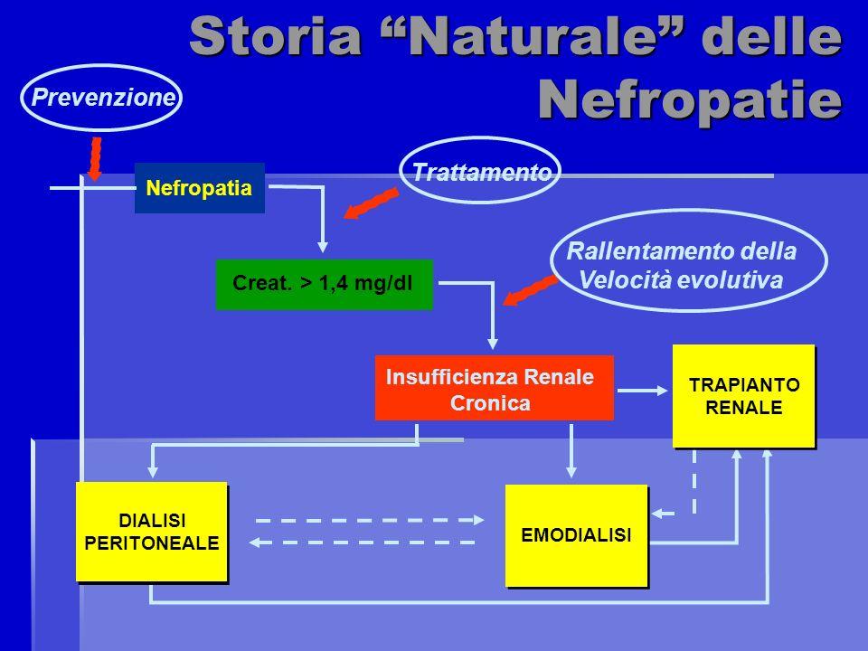 Nefropatia Creat. > 1,4 mg/dl Insufficienza Renale Cronica Storia Naturale delle Nefropatie DIALISI PERITONEALE EMODIALISI TRAPIANTO RENALE Trattament