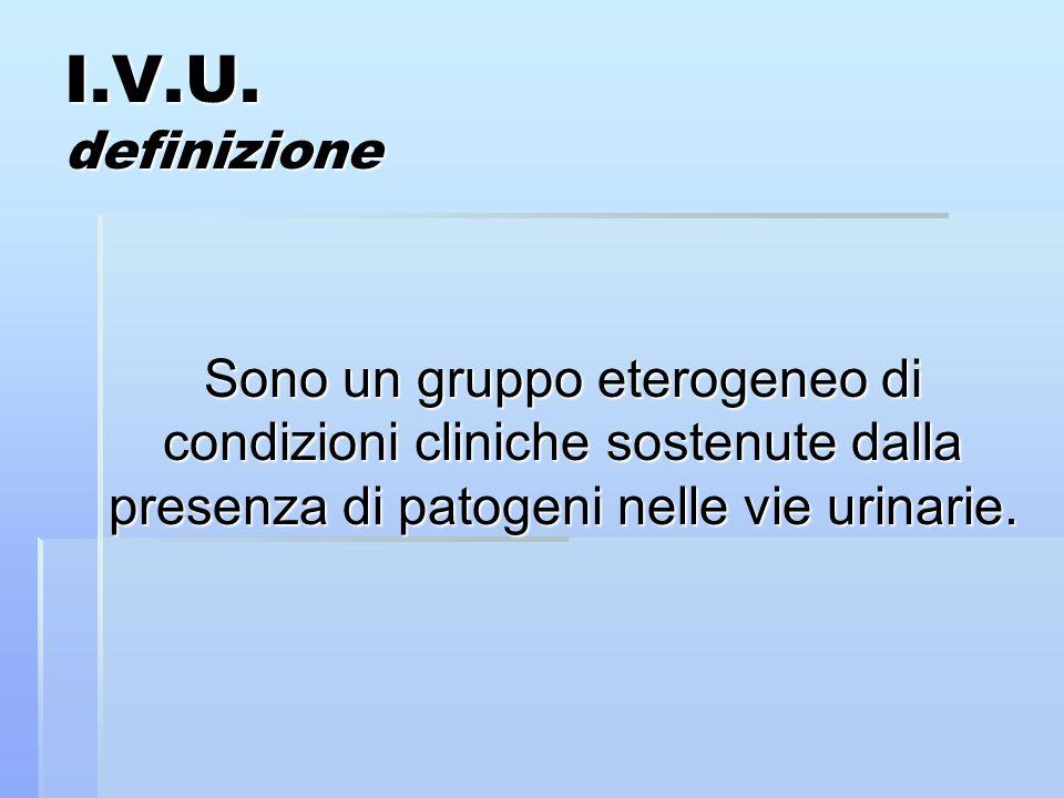 I.V.U. definizione Sono un gruppo eterogeneo di condizioni cliniche sostenute dalla presenza di patogeni nelle vie urinarie.