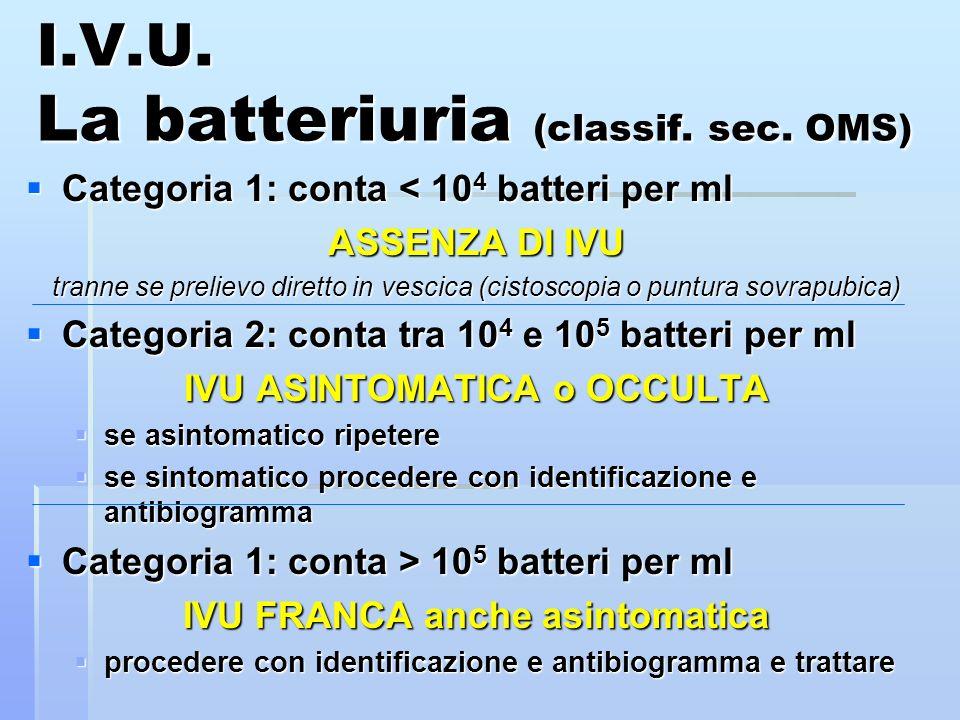 I.V.U. La batteriuria (classif. sec. OMS) Categoria 1: conta < 10 4 batteri per ml Categoria 1: conta < 10 4 batteri per ml ASSENZA DI IVU tranne se p