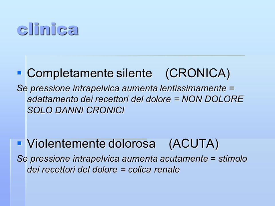 clinica Completamente silente (CRONICA) Completamente silente (CRONICA) Se pressione intrapelvica aumenta lentissimamente = adattamento dei recettori del dolore = NON DOLORE SOLO DANNI CRONICI Violentemente dolorosa (ACUTA) Violentemente dolorosa (ACUTA) Se pressione intrapelvica aumenta acutamente = stimolo dei recettori del dolore = colica renale